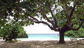 Frenchman's-Cove - Port Antonio Jamaica W.I.